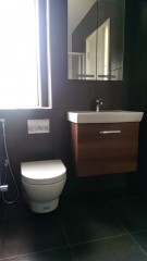 bathroom3 (1)